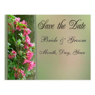 Save the Date Nature Card Postcards