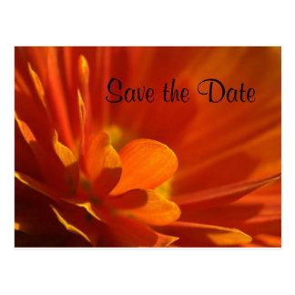 Save the Date orange Flower Postcard