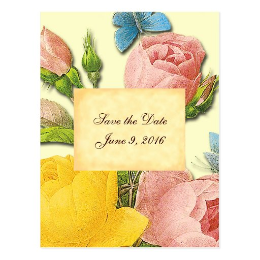 Save the Date Pink Yellow Vintage Roses Postcard Post Card