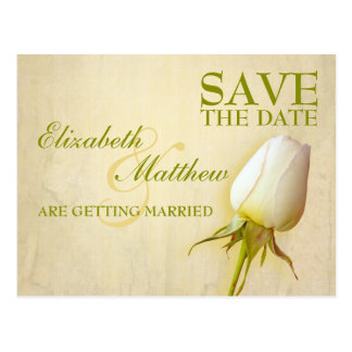 Save the Date Postcard Single White Rose Bud