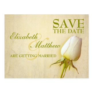 Save the Date Postcard Single White Rose Bud