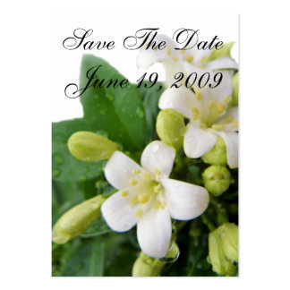 Save The Date Reception Business Cards