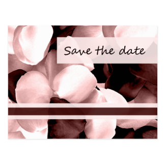 save the date ~ rose petals post cards