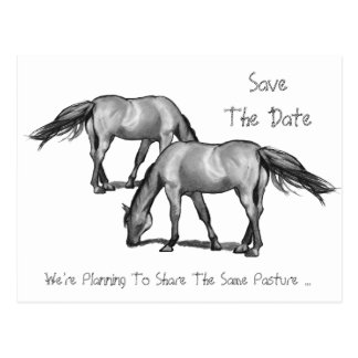 Save The Date: Two Horses: Getting Hitched Postcard