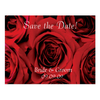 Save the Date Wedding Postcard Red roses