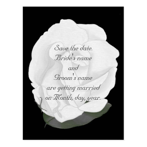 Save the date wedding postcards, white rose