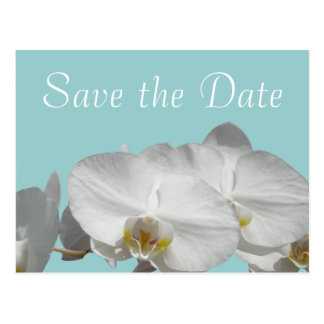 Save the Date White Orchid on Jewel Blue Postcard