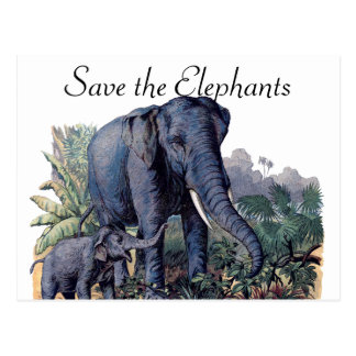 Save the Elephants Postcard