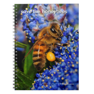 Save the Honeybees Pollinating California Lilac Notebook