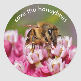 Save the Honeybees Pollinating Narrowleaf Milkweed Classic Round Sticker