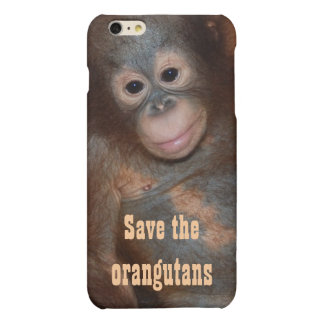 Save the Orangutans Charity Animal Rescue