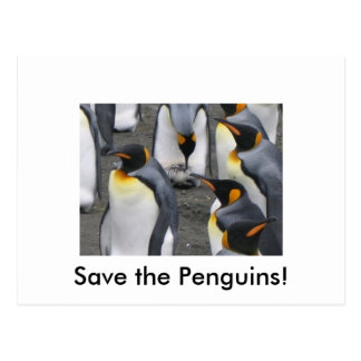Save the Penguins! Postcard
