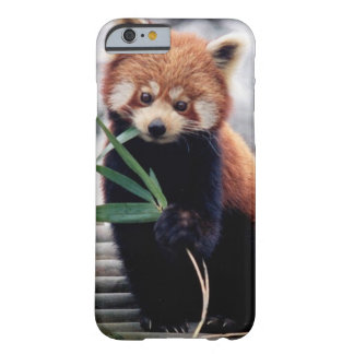 Save the Red Panda iPhone 6/6s Case