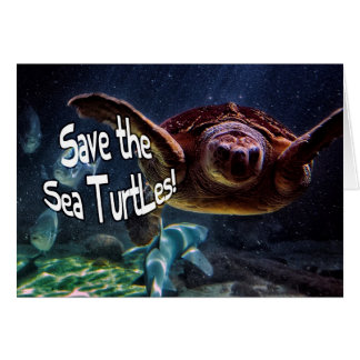 Save the Sea Turtles Animal Photo Card