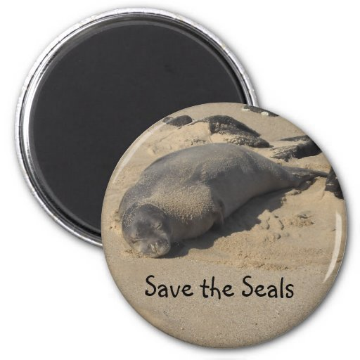Save the Seals Fridge Magnets