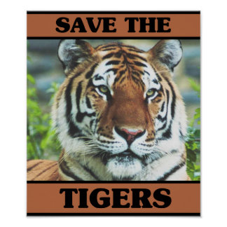 Save the Tigers Print