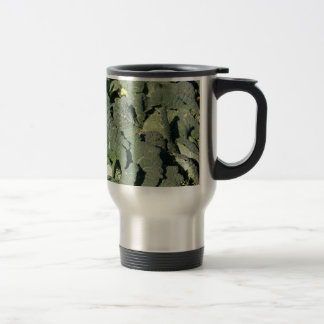 Savoy cabbage plants in a field. travel mug