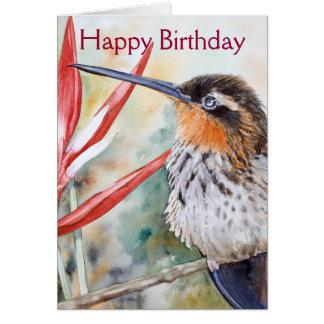 Saw-billed Hermit Hummingbird Card