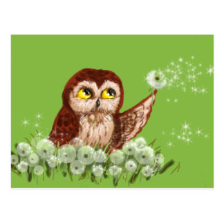 Saw-whet owl dandelion postcard