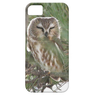Saw Whett Owl Sleeps outside Motel on Jersey Shore Barely There iPhone 5 Case