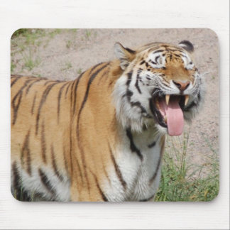 Say Cheese Tiger Mousepad