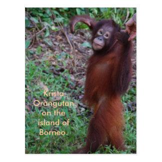 Say No to Bullies with Krista orangutan Postcard