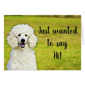Saying Hi & I Miss You Cute Poodle Card