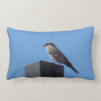 Say's Phoebe Pillow
