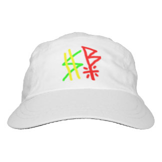 sb logo hat