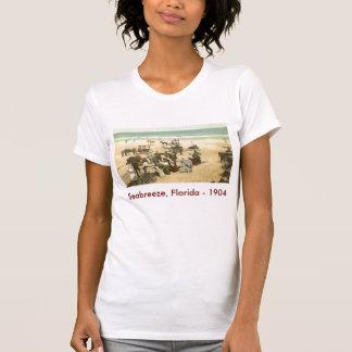 scan0002, Seabreeze, Florida - 1904 T-Shirt