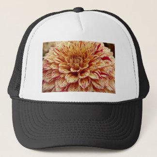Scandalous Virtue Trucker Hat