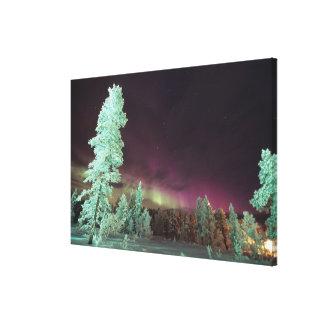 Scandinavia, Finland, Lapland, Kakslauttanen, Stretched Canvas Print
