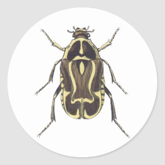 Scarab Beetle Round Sticker