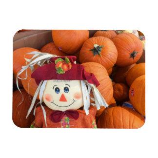 Scarecrow & Pumpkins Magnet