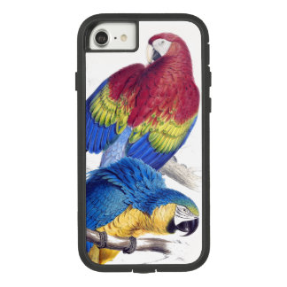 Scarlet Blue Macaw Parrot Birds iPhone 7 8 Case