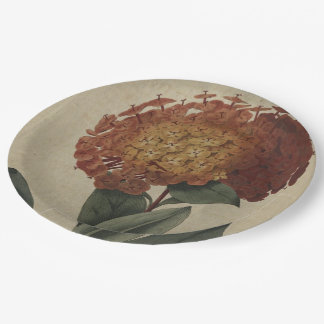 Scarlet Ixora 9 Inch Paper Plate