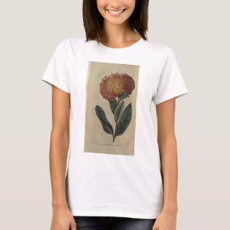 Scarlet Ixora T-Shirt