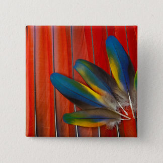 Scarlet Macaw Feather Design 15 Cm Square Badge