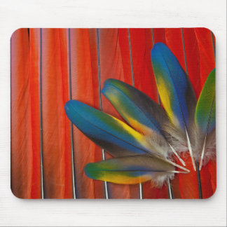 Scarlet Macaw Feather Design Mouse Pad