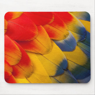 Scarlet Macaw feathers close-up Mouse Pad