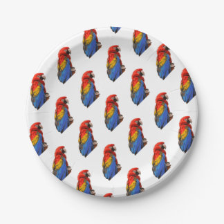 Scarlet_Macaw Paper Plate