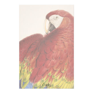 Scarlet Macaw Parrot Bird Wildlife Stationery