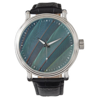 Scarlet macaw parrot feather watch