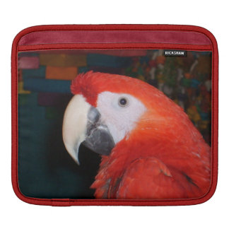Scarlet Macaw Profile View Sleeve For iPads