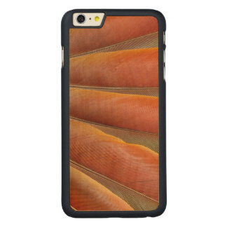 Scarlet Macaw Red-Orange Feathers Carved Maple iPhone 6 Plus Case