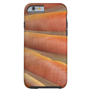 Scarlet Macaw Red-Orange Feathers Tough iPhone 6 Case