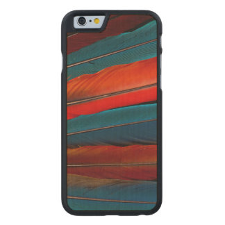 Scarlet Macaw Tail Feathers Carved Maple iPhone 6 Case