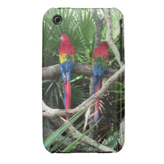 Scarlet Macaws Phone Case For iPhone 3G/3GS