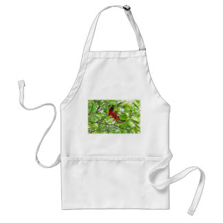 Scarlet Mackaws Picture Aprons