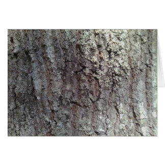 Scarlet Oak Tree Bark Card